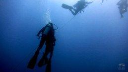 Dive Soul - Curso de Especialização em Profundo - Deep Dive